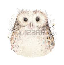 paint owl stock photos royalty free paint owl images and pictures