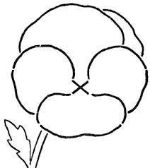 draw pansies step step pansy drawing tutorial