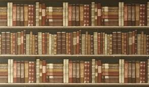 42 Wide Bookcase Bookcase Wide Wallpapers On Kubipet Com