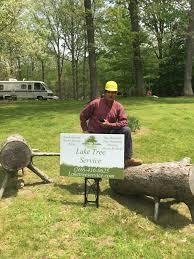 lake tree service tree service tree removal tree trimming