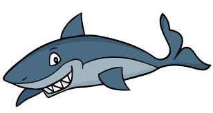 film kartun ikan hiu koleksi gambar gambar animasi hiu terbaru 2018 sapawarga