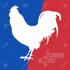 Frwnch Flag France Vector Illustration With French Flag Colors And