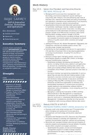 Board Of Directors Resume Sample by Executive Director Resume Samples Visualcv Resume Samples Database