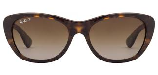 ray ban cats 5000 tortoise polarized gradient www tapdance org