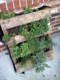 vertical herb garden planter designs ideas