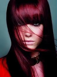 Light Burgundy Hair Hair Color Dark Underneath Light On Top In 2016 Amazing Photo