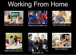 Working From Home Meme - funny memes about working from home funny memes pinterest