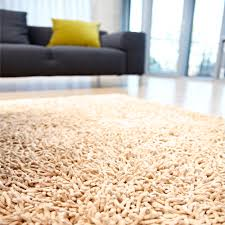 Safavieh Rug by Cheap Shag Rugs Area Rugs Astonishing Cheap Modern Rugs Unique
