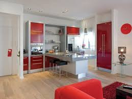 Red Kitchen Cabinets Kitchen Preferential Home Kitchen Designs Glossy Red Kitchen