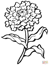 carnation coloring pages free coloring pages