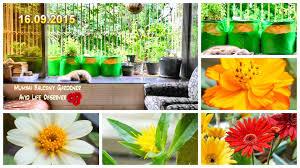 small space garden makeover season 2 begins youtube