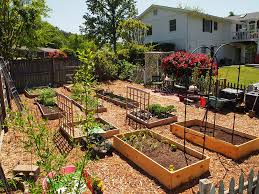 the gorgeous of raised bed vegetable garden design made of rusty