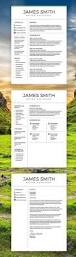 Classic Resume Template 1370 Best Cv U0026 Resume Design Images On Pinterest Business