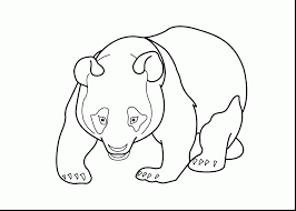 5 coloring pages printable kids