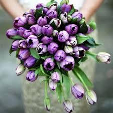 Violet Wedding Flowers - 140 best green u0026 purple wedding images on pinterest flowers