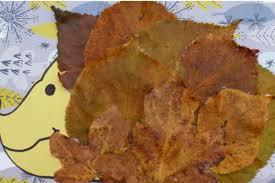autumn crafts for kids leafy hedgehog netmums