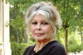 Birdget Bardot - brigitte bardot becomes great grandmother tootlafrance