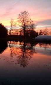 Meyer Aquascapes Aquascapes Unlimited Wetland Nursery Home Facebook