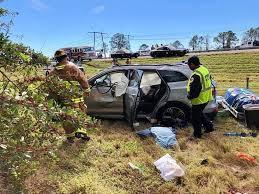 buffalo grove man killed in florida car crash