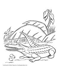 18 coloring dinosaurs images dinosaur coloring