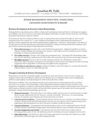 Senior Management Resume Examples by Executive Summary Example Resume