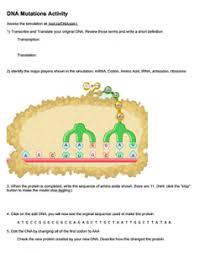 dna mutation activity