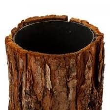 Wood Vases Wholesale Birch Bark Base For Engraving Names In Heart Like On A Tree