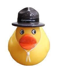 yosemite ranger rubber duck yosemite store official