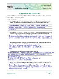 lizard evolution virtual lab student worksheet 1 adaptation