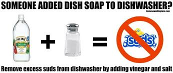 Fisher And Paykel Nautilus Dishwasher Manual How To Fix Remove Dish Soap In Dishwasher Removeandreplace Com