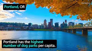 halloween city miamisburg ohio pets animal news funny stories u0026 more