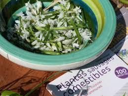 la cuisine des plantes sauvages la cuisine des plantes sauvages domaine du rayol