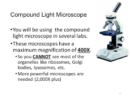compound light microscope facts body tube body tube monocular microscope parts functions ocular