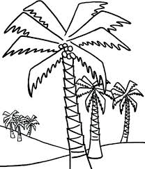 coloring pictures of a palm tree palm tree coloring pages for kids tree pictures to print amazing
