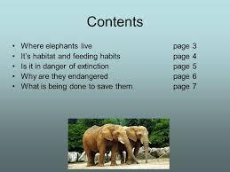 elephants an endangered species by matthew cutler ppt