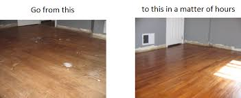 floors llc delreia