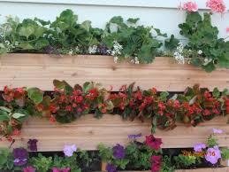 building a vertical pallet wall garden glenns garden gardening blog