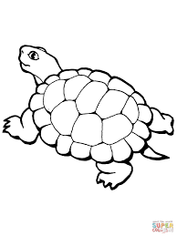 walking tortoise coloring page free printable coloring pages