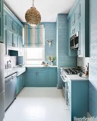 Galley Kitchen Design Ideas by Elegant Interior And Furniture Layouts Pictures Galley Kitchen