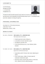 simple resume template word best 5 free professional simple resume template word doc