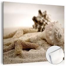 glasbilder 30x30 neu acrylglasbilder bild deko glas glasbild muschel strand natur