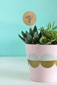 easy diy modern planter and hostess gift idea super simple