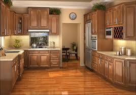 Kitchen Cabinet Upgrade by Kitchen Upgrade Cabinets Refinish Kitchen Cabinets Ideas Painted