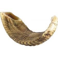 buy a shofar horn ram s horn shofar judaica mall