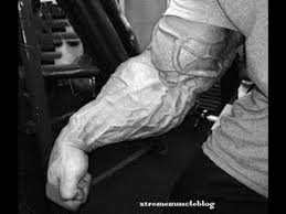 Best Forearm - the best forearms in history