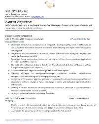 Secretary Sample Resume by Professional Profile Resume Examples U2013 Okurgezer Co