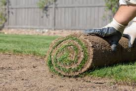 landscaping interesting how to lay sod for lawn with wood fences