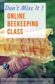397 best best of carolina honeybees farm beekeeper charlotte