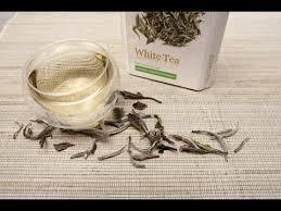 Teh Putih ternyata inilah manfaat teh putih white tea untuk kesehatan
