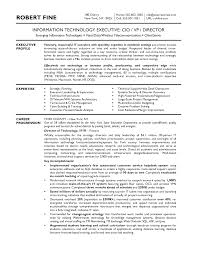 information technology resume examples cover letter cio resume samples cio resume sample doc cio resume cover letter executive sample cio resume for your executive writing cfo cover letter samplecio resume samples